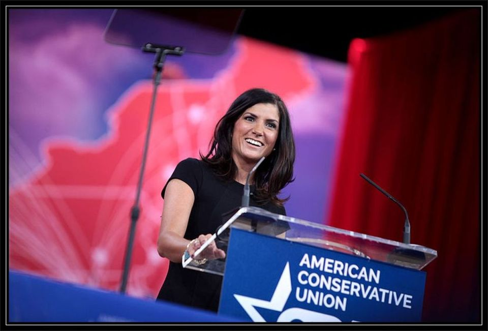 Dana_Loesch and the NRA